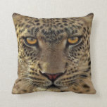 Pillow Pet cheetah