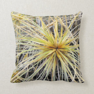 Pillow Shows Spinifex Grass