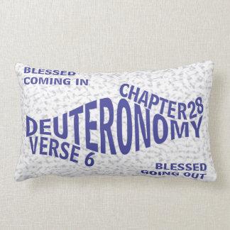 pillowKOZ03_1321eng_BlessedComnGoin Lumbar Pillow