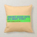 armando aguiar (Rato)  2013 smart street  Pillows