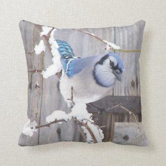 Pillows featuring backyard birds
