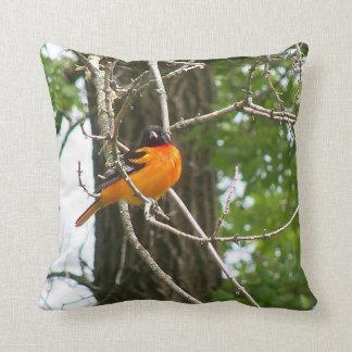 Pillows featuring songbirds