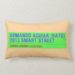 armando aguiar (Rato)  2013 smart street  Pillows (Lumbar)