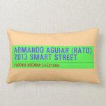 armando aguiar (Rato)  2013 smart street  Pillows (Lumbar)