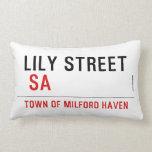 Lily STREET   Pillows (Lumbar)