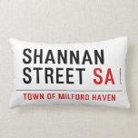 Shannan Street  Pillows (Lumbar)