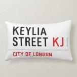 Keylia Street  Pillows (Lumbar)