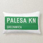 PALESA  Pillows (Lumbar)