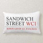 SANDWICH STREET  Pillows (Lumbar)
