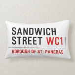 Sandwich Street  Pillows (Lumbar)