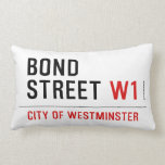BOND STREET  Pillows (Lumbar)