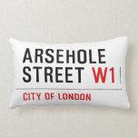 Arsehole Street  Pillows (Lumbar)