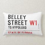 Belley Street  Pillows (Lumbar)