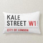 Kale Street  Pillows (Lumbar)
