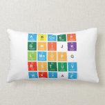 Abcdef ghijk lmnopq rstuv wxy&z  Pillows (Lumbar)
