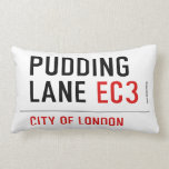 PUDDING LANE  Pillows (Lumbar)