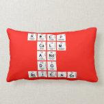 KEEP CALM AND DO SCIENCE  Pillows (Lumbar)
