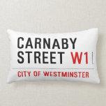 CARNABY STREET  Pillows (Lumbar)