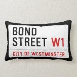 Bond Street  Pillows (Lumbar)