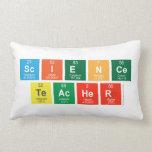 Science Teacher  Pillows (Lumbar)