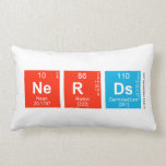 Nerds  Pillows (Lumbar)