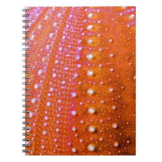Pilluelo-Coral del mar Spiral Notebook