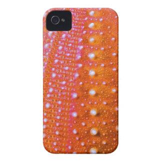 Pilluelo-Coral del mar iPhone 4 Case-Mate Protectores