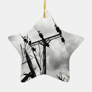 Pilón blanco y negro adorno de cerámica en forma de estrella