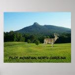 PILOT MOUNTAIN, NORTH CAROLINA POSTER