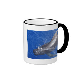 Pilot Whale in Hawaii Ringer Mug