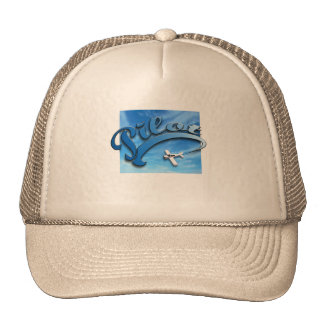 Pilot with white airplane. trucker hat