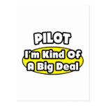 Piloto = clase de una gran cosa tarjetas postales