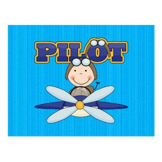 Piloto del aeroplano postal