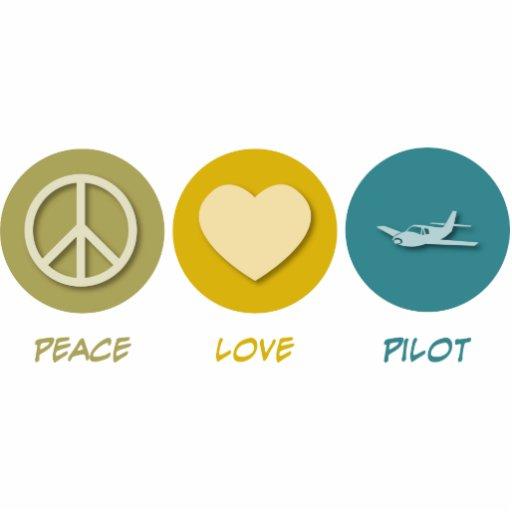 Piloto del amor de la paz escultura fotográfica