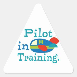 Piloto personalizado en el entrenamiento pegatina triangular