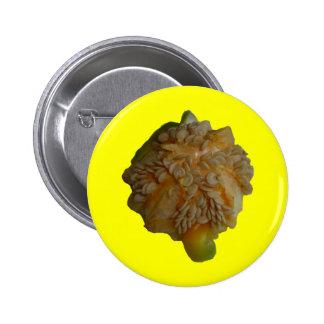 Pimienta amarilla - abrigos apagado pins