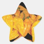 Pimienta de chiles caliente de Fatalii Calcomanías Forma De Estrellaes Personalizadas