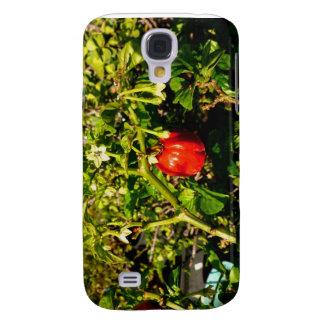 pimienta roja del solo habanero en planta samsung galaxy s4 cover