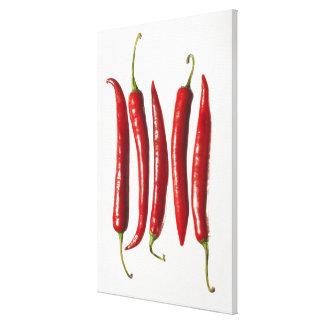 Pimientas de chile en una fila lona envuelta para galerias