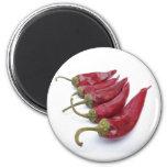 Pimientas de chile rojo imán redondo 5 cm