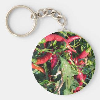 Pimientas de chile rojo que cuelgan en la planta llavero redondo tipo pin