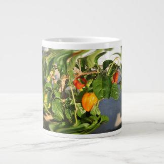 Pimientas del habanero en la foto de la planta tor tazas extra grande