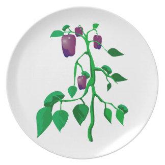 Pimientas púrpuras en gráfico de la planta verde platos para fiestas