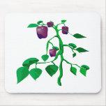 Pimientas púrpuras en gráfico de la planta verde alfombrillas de ratón