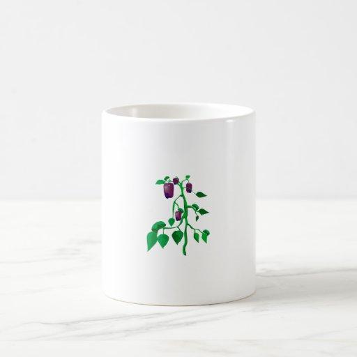 Pimientas púrpuras en gráfico de la planta verde taza