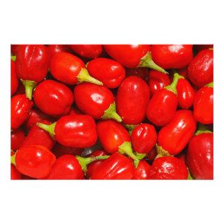 Pimientas rojas arte fotográfico