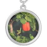 pimiento picante rojo del habanerno contra las hoj colgante personalizado