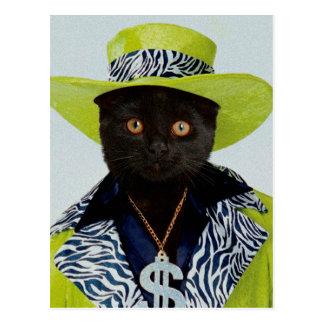 Pimp Cat Postcard