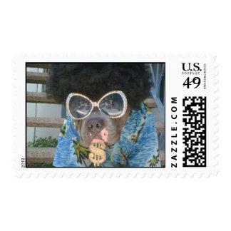pimpbull postage stamp