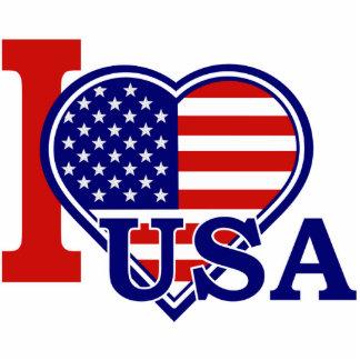Pin americano de la bandera del corazón escultura fotográfica